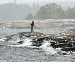 Storby Fiskekort
