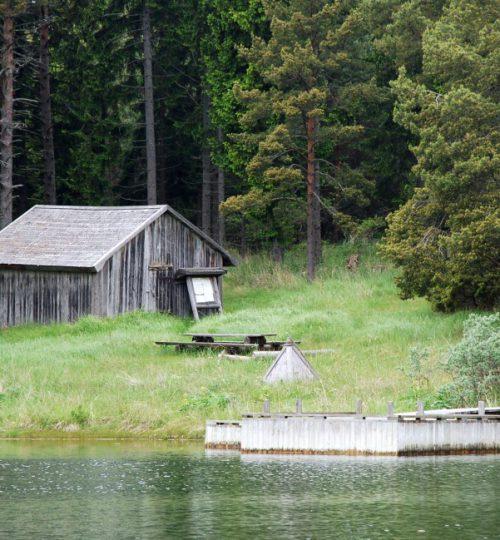 Not stugan Foto: Siv Mattsson